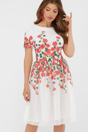 Сукня  Міяна GL879802 червоний